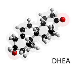 DHEA Ft. Lauderdale, DHEA Miami, DHEA Margate, DHEA West Palm Beach, DHEA South Florida, DHEA Coral Springs, DHEA Coconut Creek, DHEA Tamarac, DHEA North Lauderdale